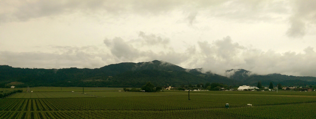 Wine tasting in Napa - panorama from Opus One
