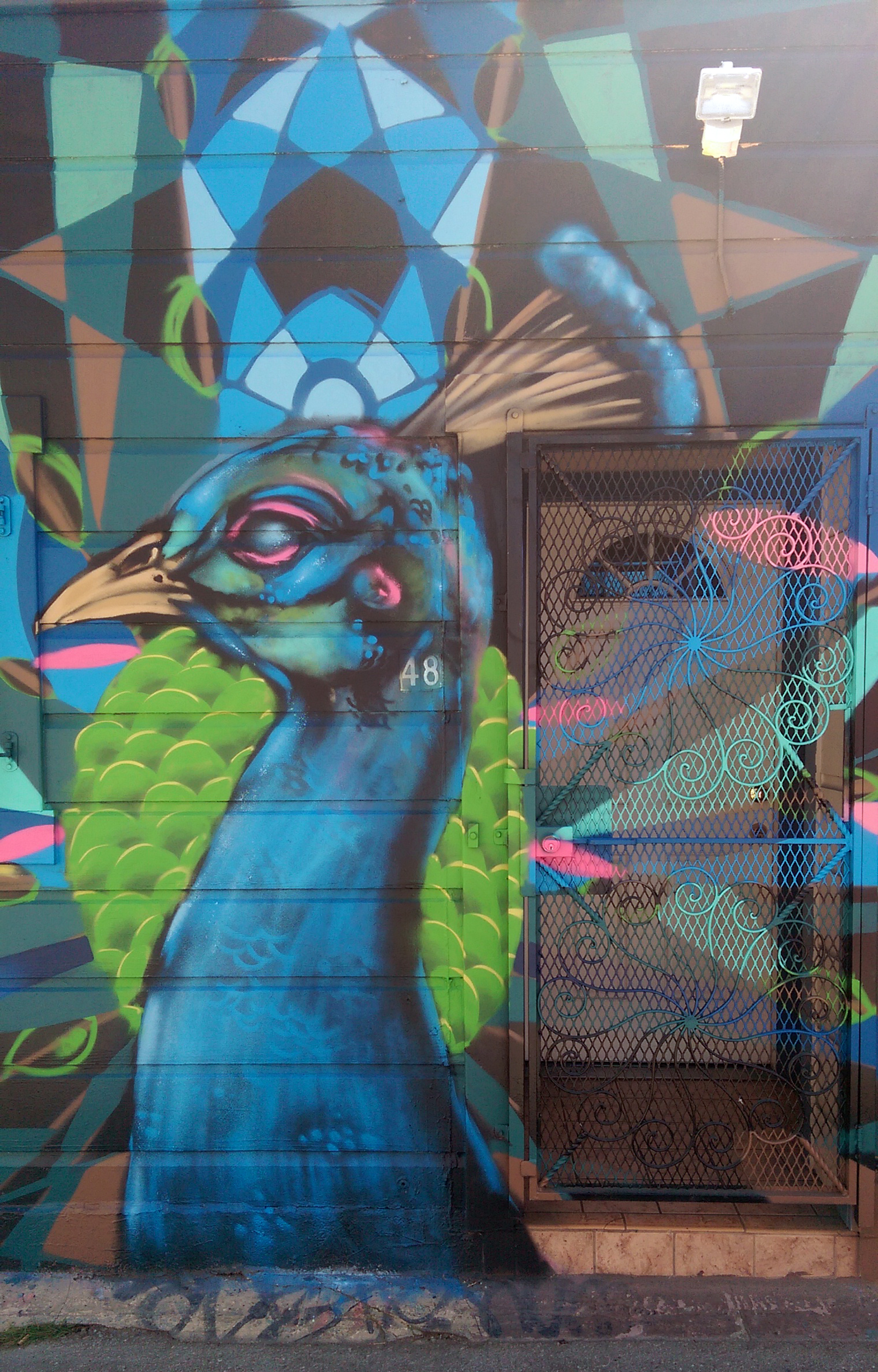 Sightseeing in San Francisco - streetart-peacock