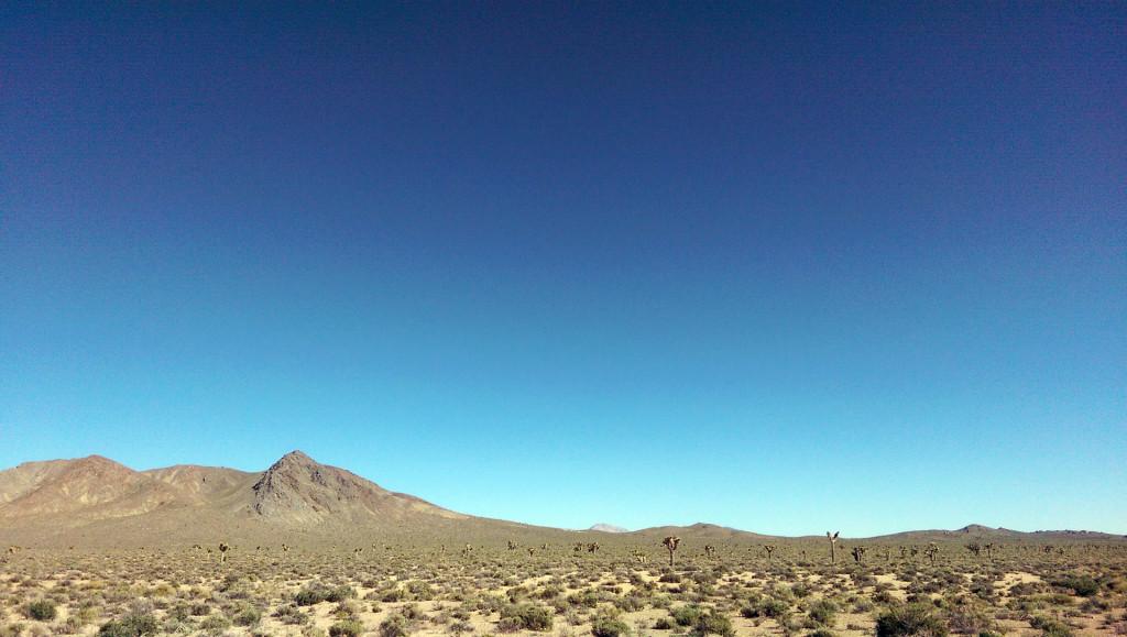 Road trip to Las Vegas - View-of-desert-scrub-joshua-trees