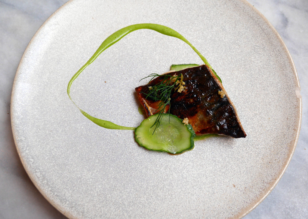 Clove-Club-mackerel