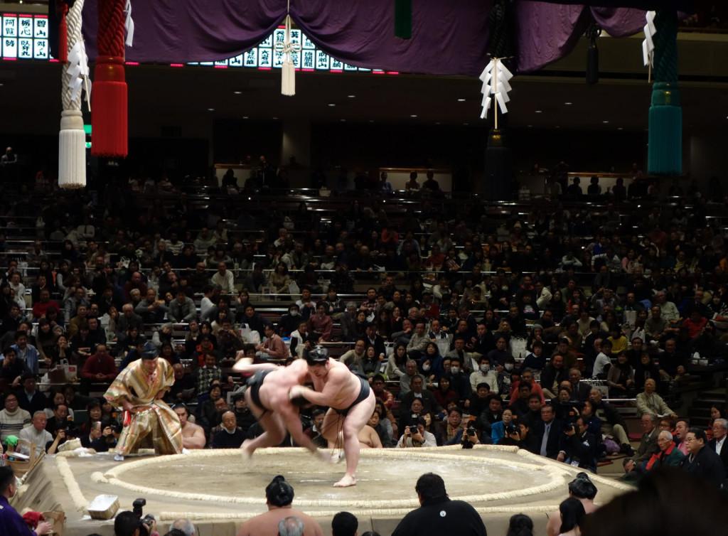 Cultural sight-sumo-fight