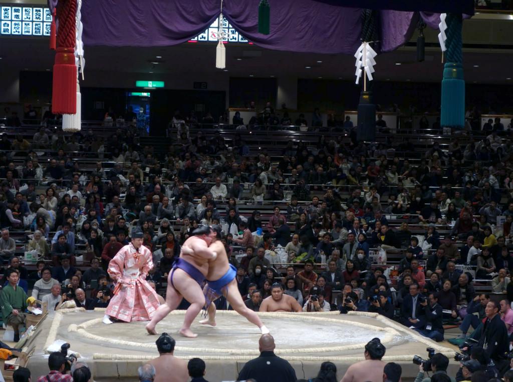 Cultural sight-sumo-fight2
