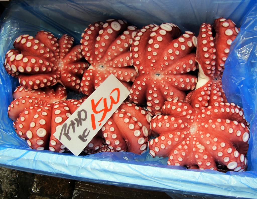 Cultural sight-tsukiji-octopus