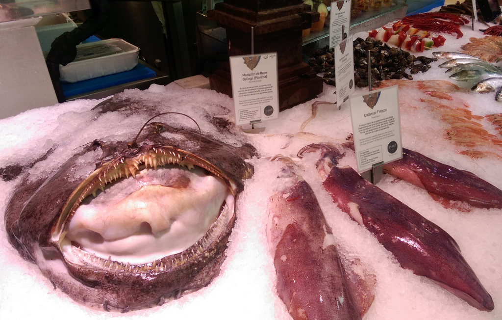 Madrid-market-fish