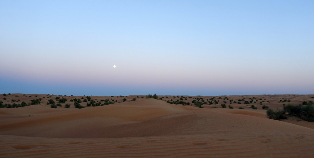 Al-Maha-moon-over-the-desert