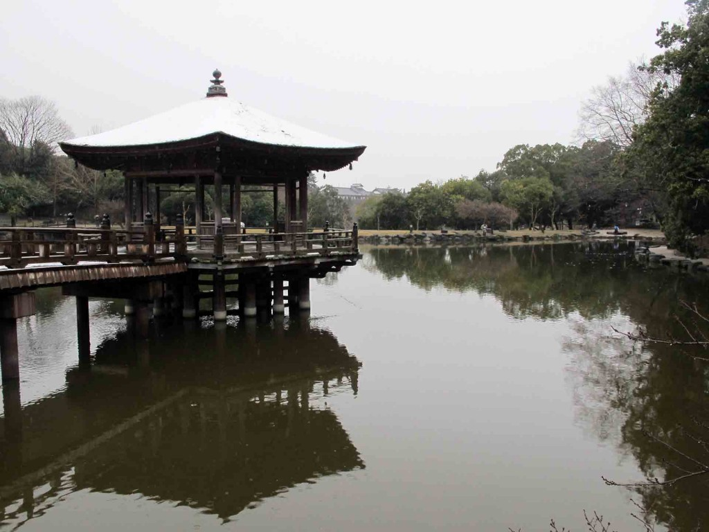 Nara-Sarusawa-pond