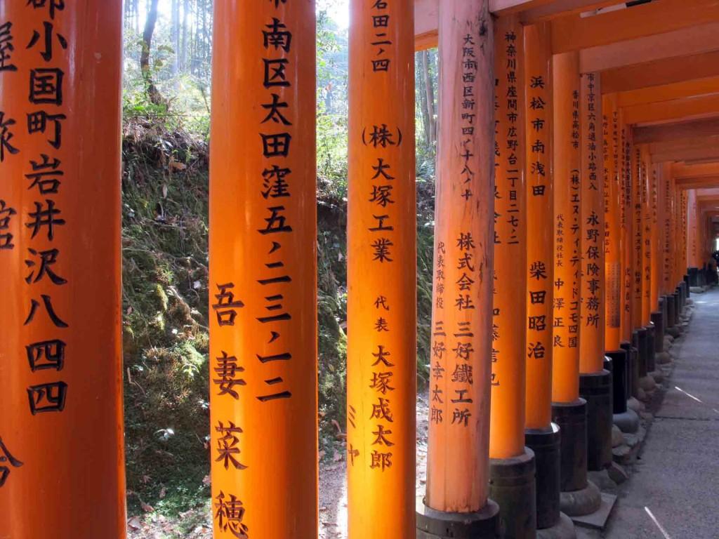 Kyoto-Fushima-inari-torii(5)