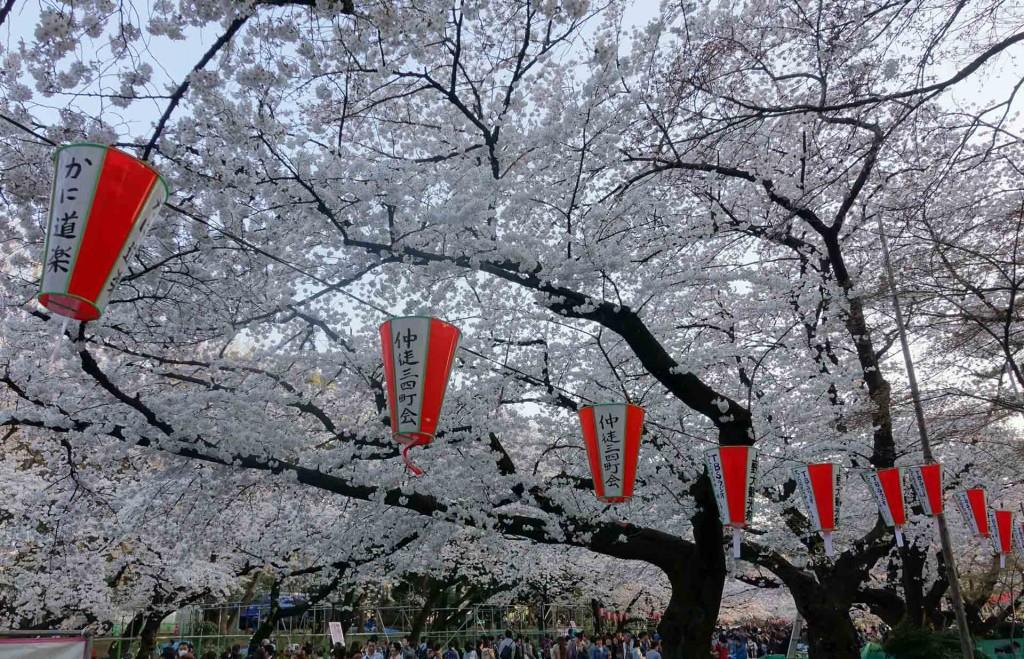 Hanami-Ueno-Park(1)